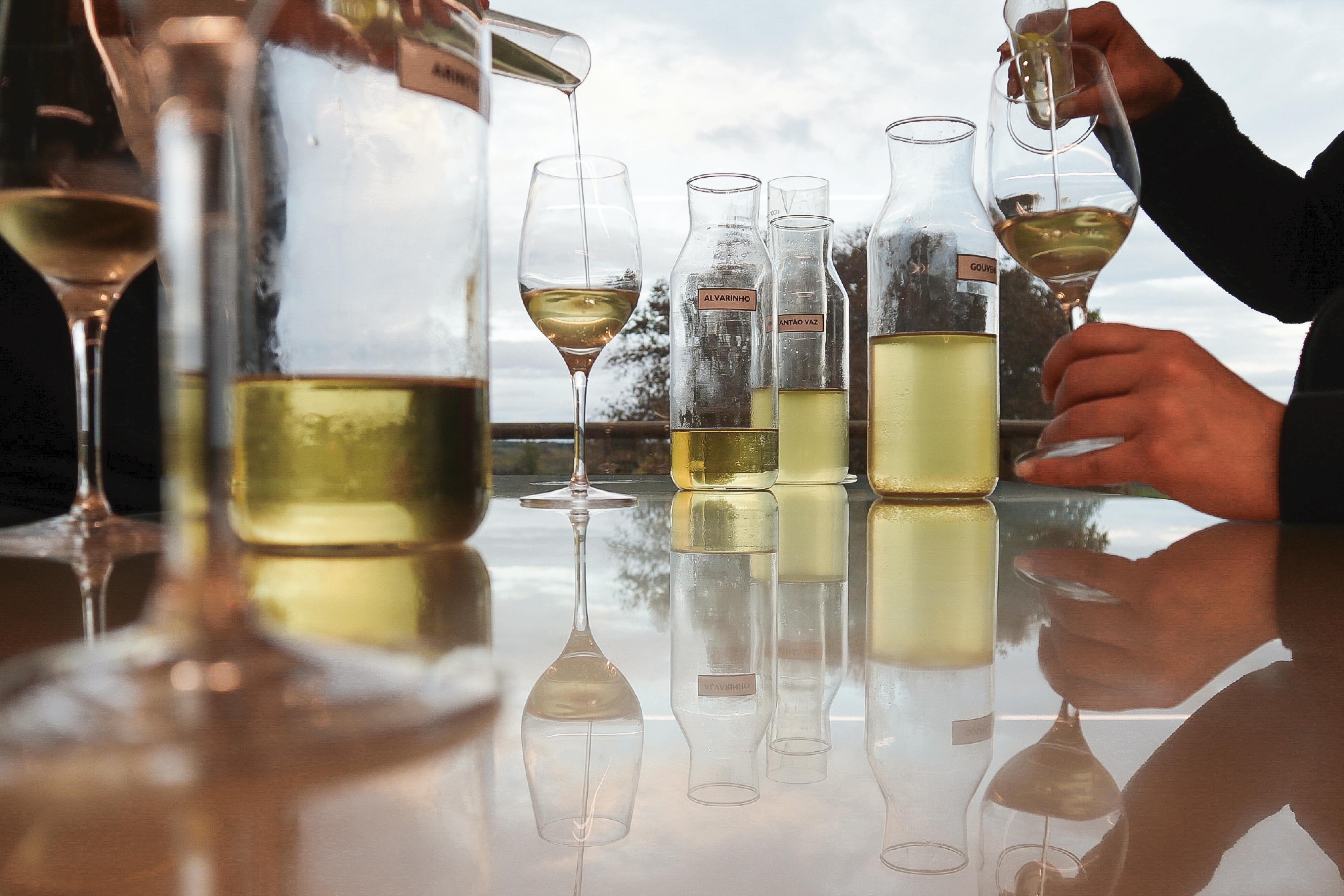 WineMaker for a day at your Home!